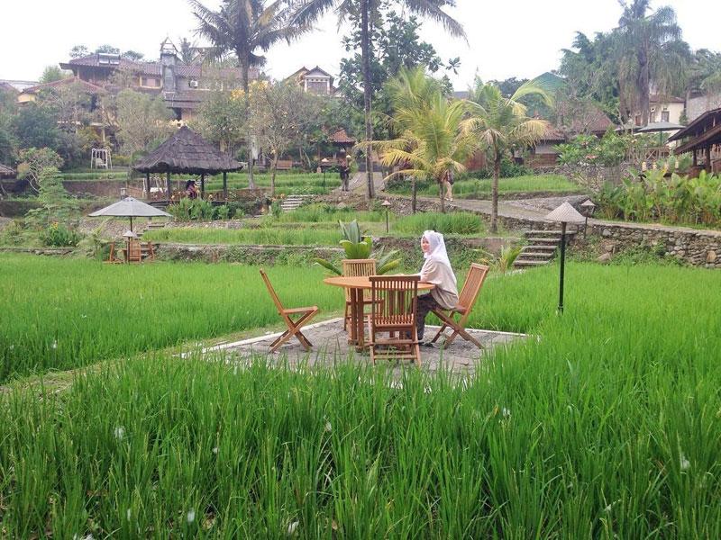 5-1-paddy-city-resort-malang-via-adishkharisha